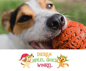 Koop dierenspeeltjes op dierenspeelgoedwinkel.nl
